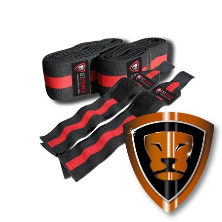GS Heavy Duty Power Pack (set)